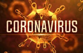 Corona Virus Stan
