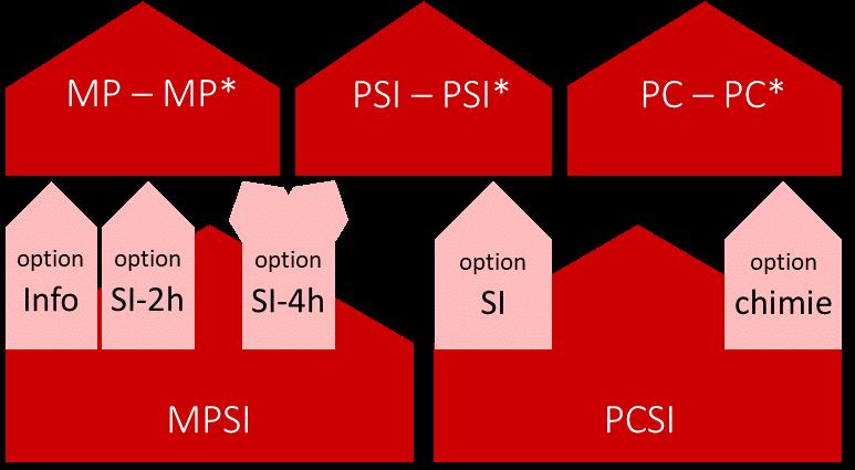 Options Sup
